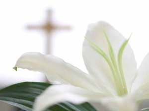 flowers-easter-backgrounds-powerpoint