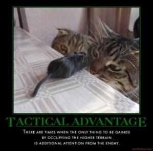 tactical-advantage-von-clausewitz-notwithstanding-demotivational-poster-1244349100