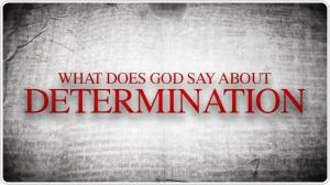 Determination-WDGSA